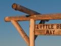 little-belt-way-banner