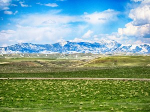White Tail Ranch
